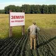 Можно ли продавать земельные паи Лис
